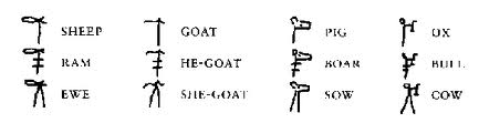 Ideagrams representing male and female sheep, goats, cows and pigs.