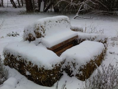A close-up of the hive. Snow is insulating, right? I can still hope.