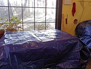 Inside the studio. My wintering geraniums are in the back, getting lots of water.